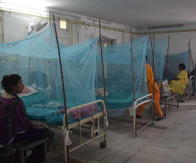 डेंगू का डंक: राजधानी में अब तक का आंकड़ा 500 पार Dehradun News