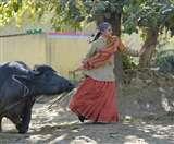 Saand Ki Aankh: भैंस के साथ खेल रही थीं तापसी पन्नू... फिर ऐसा हुआ कि भागना पड़ा, देखें PICS