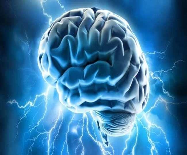 Food that enhance brain development image 3