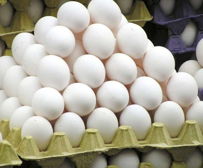 Jagran special on Egg cost