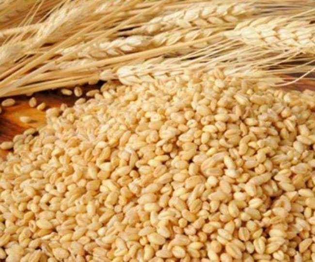 तापमान में हर एक डिग्री सेल्सियस की वृद्धि पर छह हजार किलो गेहूं का उत्पादन प्रभावित हो सकता है।