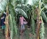 पद्मश्री रामसरन का ' गांव में काम ' मॉडल रोकेगा किसानों का पलायन, लॉकडाउन में दे रहा लोगों को रोजगार