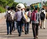 यूपी सरकार ने हाई कोर्ट को प्रवासी श्रमिकों के पुनर्वास के लिए उठाए गए कदमों की दी जानकारी
