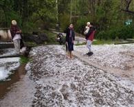 तेज बारिश व ओले गिरने से फसल को नुकसान