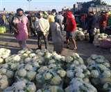 फल-सब्जियों की वीरवार की रेट लिस्ट जारी, आलू तीस रुपये प्रति किलो