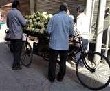 फल-सब्जियों की शुक्रवार की रेट लिस्ट जारी, प्याज-आलू 40 रुपए प्रति किलो