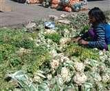Uttarakhand Lockdowm: किसानों पर पड़ रही है लॉकडाउन की मार, औने-पौने दाम में बेच रहे उपज