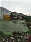 बारिश से महाबलीपुरम की जनता को लगता है डर