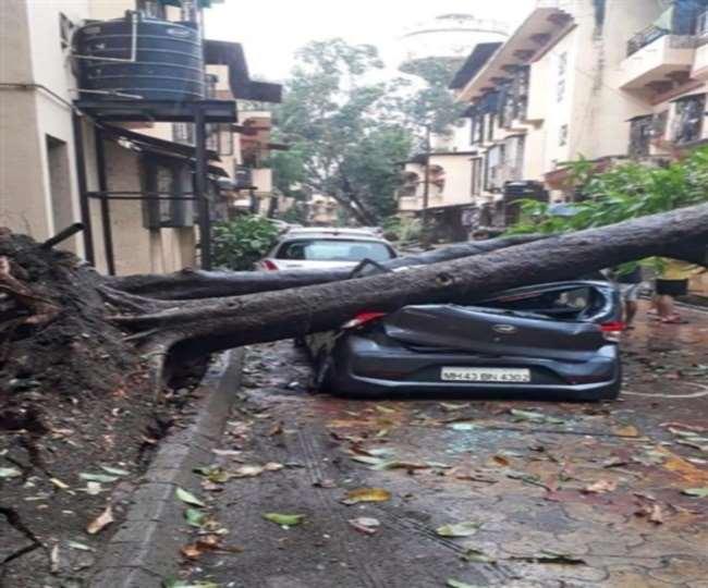 IN PICS Cyclone Nisarga: चक्रवाती तूफान की तेज हवाओं ने उखाड़ दिए पुराने पेड़, ट्रैफिक पर असर