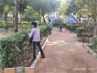 डीडीए ने पार्को में शुरू किया कार्य, पौधों का रखा जा रहा खयाल