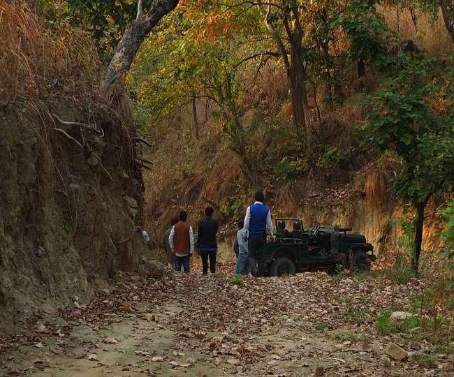 जंगल सफारी करने के लिए अभी पर्यटकों को इंतजार करना पड़ेगा।