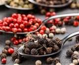 स्वाद के अलावा हर्बल चिकित्सा में भी जादू बिखेरता है यह मसाला, जानें 'कबाबचीनी' की खासियत