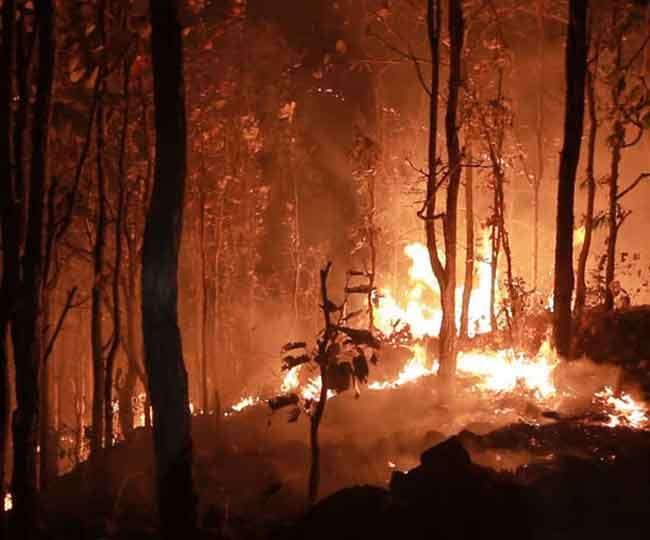 Simlipal forest fire is now under control