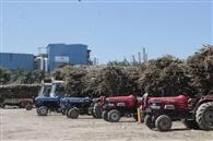 मिल में गन्ना लेकर आए किसानों को रहना पड़ा रहा 15 घंटे भूखे प्यासे