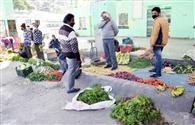 नैनीताल में गिरे सब्जियों के दाम