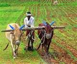 Coronavirus Lockdown: संकट की घड़ी में भी झारखंड के 5 लाख किसानों को नहीं मिले 2-2 हजार PM Kisan Yojna