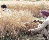कोरोना के चलते मोदी सरकार कृषि क्षेत्र पर मेहरबान, खेती-किसानी को मिली और राहत
