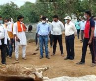 मलकपुर गोशाला में चार गाय की मौत, जांच के आदेश
