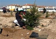 विदेशों में पौधे लगा साबिर अली ने दिया पर्यावरण का संदेश