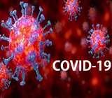 Coronavirus Kanpur: कानपुर में फिर दूसरे दिन रिकार्ड 20 कोराना संक्रमित मिले, चित्रकूट में 11 और उन्नाव में भी दो नए केस