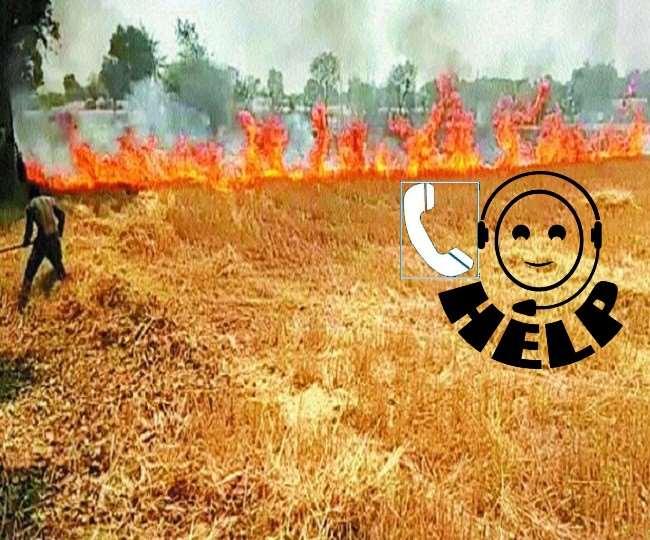 लखनऊ के मोहनलालगंज, गोसाईगंज, माल, काकोरी, बीकेटी में हुए अग्निकांड। गेहूं की फसलों को हुआ सबसे अधिक नुकसान।