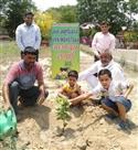 पौधारोपण कर पर्यावरण दिवस मनाया