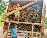 Vocal For Local : चाकुलिया का बांस पूर्वोत्तर राज्यों से ले सकता टक्कर Jamshedpur News