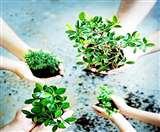 बच्चे दो और पेड़ हजार का लक्ष्य बनाकर गोपाल ने सामाजिक के साथ व्यक्तिगत जिम्मेदारी भी निभाई