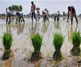 देश के करीब आधे राज्यों के पास ही भू-जल संबंधी कानून मौजूद हैं, जबकि समस्या विकराल है