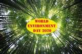 World Environment Day: जैव विविधता अपनाकर बचाया जा सकता है पर्यावरण, ये हैं उदाहरण