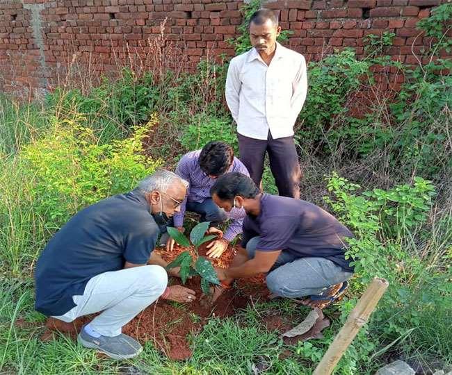 World Environment Day, Jharkhand News रांची के महानगर पर्यावरण प्रमुख दुर्गेश कुमार ने 500 पौधों का वितरण किया।