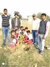 छात्र-छात्राओं के जन्मदिन पर स्कूल में लगा रहे पेड़