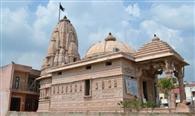 सात मंदिरों में मूलनायक के रूप में विराजमान हैं महावीर