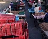 आम आदमी को राहत: सब्जियों के रेट हुए आधे, आज बंद रहेगी Sector-26 मंडी
