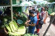 मालदेवता से होगी फल-सब्जी की आपूर्ति