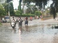 तीन घंटे 8.1 एमएम बारिश से शहर की सड़कें जलथल