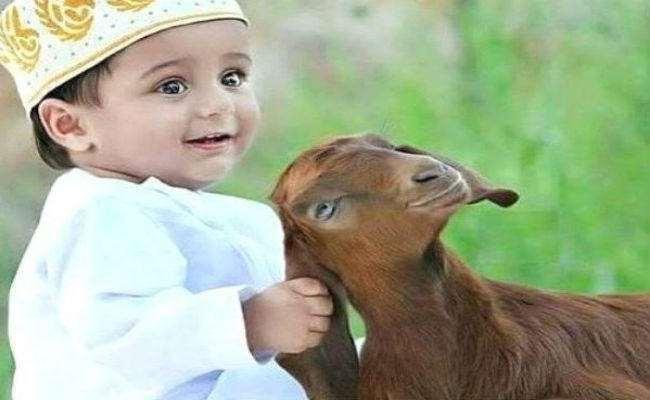 Bakrid / Eid al Adha 2021:  कब है बकरीद? कब दिखेगा चांद और क्या हैं इस पर्व के रीति-रिवाज़