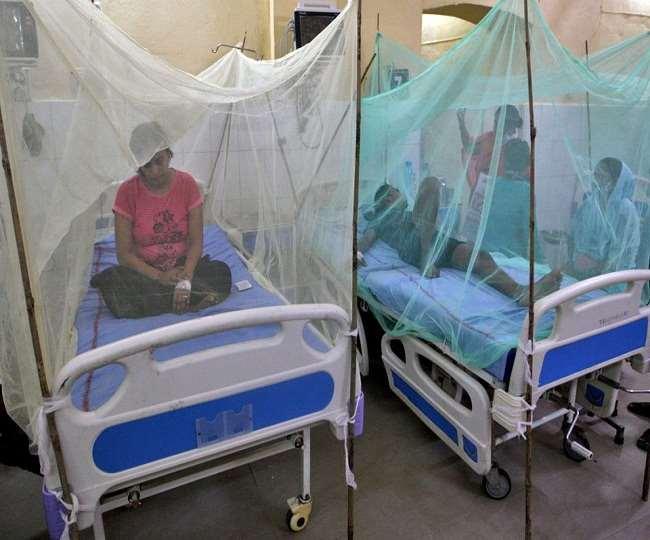 डेंगू-मलेरिया का प्रकोप जारी: उत्तर प्रदेश में 68 एक्टिव मामले, तमिलनाडु में किए जा रहे रोकथाम के उपाय
