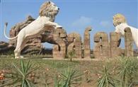 शेरों को ठंड से बचाने के लिए सफारी में लगे हीटर