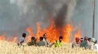 गेहूं के खेत में लगी आग, लाखों का नुकसान