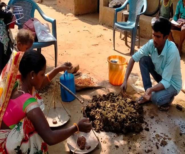 Chatra News, Jharkhand Samachar धीरे-धीरे गांव के लोगों में जैविक खेती को लेकर जागरुकता बढ़ रही है।