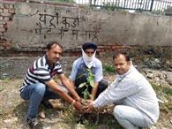 पर्यावरण प्रेमियों ने लगाए पौधे, संभाल की शपथ ली