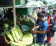फल-सब्जियों से नहीं, संक्रमित व्यक्तियों के संपर्क से कोरोना का खतरा