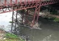 सात करोड़ 17 लाख से निर्मित होगा रानीबाग पुल