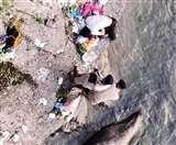 बैजनाथ में बिनवा पुल के नीचे युवक का शव बरामद, संदिग्ध हालात में मौत; सैर पर निकले लोगों ने देखा