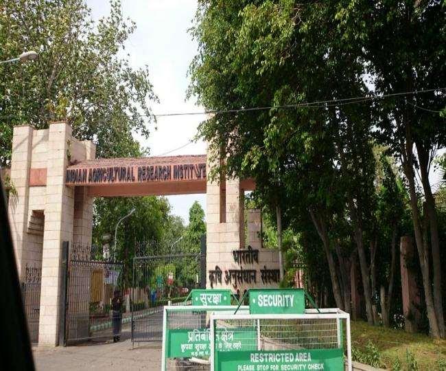 नई दिल्ली स्थित भारतीय कृषि अनुसंधान संस्थान में नई किस्मों की खोज की जाती है।