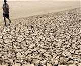 जलवायु परिवर्तन से कहीं बाढ़ तो कहीं सूखा, जिम्बाब्वे के हालात और भी खराब, मर रहे पशु
