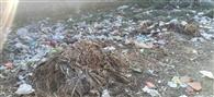 रामपुर व पाडली से नगर निगम ने वापस बुलाए सफाई कर्मी