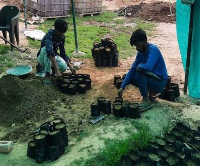 Aravalli News: खोरी गांव में भूमाफिया का दिया कब्जा ही रजिस्ट्री मान लेते हैं लोग