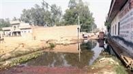 उचाना में गोशाला गली में सीवर बंद, गंदे पानी से भरी रहती है गली
